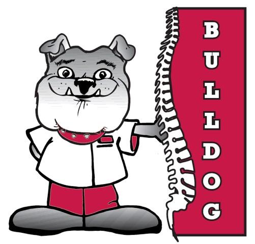 newbulldog (1)